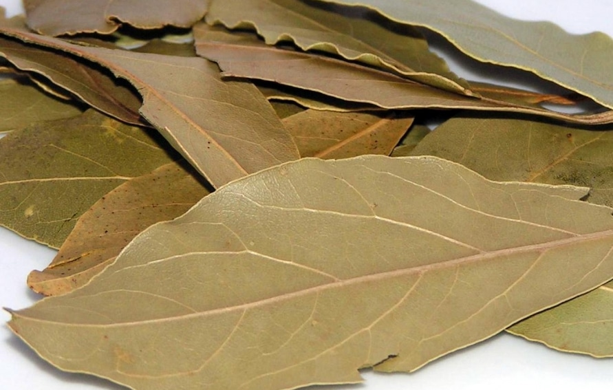 Bay Leaf In Hindi